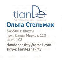 Логотип компании «ТианДе Шахты / TianDe Shakhty»