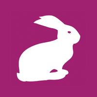 Логотип компании «Вебберин»