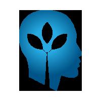 Логотип компании «Braintree»