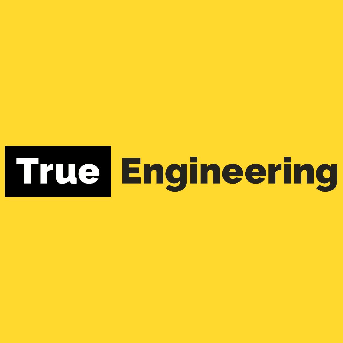 Логотип компании «True Engineering»