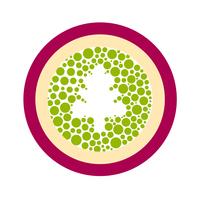 Логотип компании «MARAQUIA»