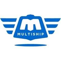 Логотип компании «MultiShip»