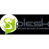 Логотип компании «Splesk»
