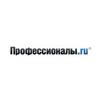 Логотип компании «Профессионалы.ru»