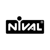 Логотип компании «Nival»