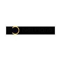 Логотип компании «NetPlanet Development»