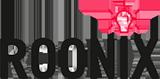 Логотип компании «Roonix»