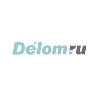 Логотип компании «Delom.ru»