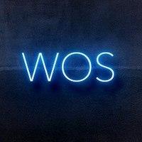 Логотип компании «W→O→S»