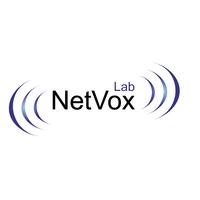 Логотип компании «Нетвокс Лаб»