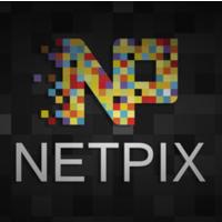 Логотип компании «netpix.pro»