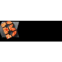 Логотип компании «ВИП-ЭЛ»