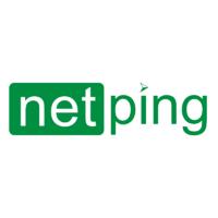 Логотип компании «NetPing»