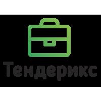 Логотип компании «Тендерикс»