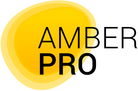 Логотип компании «Amber Pro»