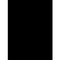 Логотип компании «Бубен гуру»