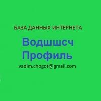 Логотип компании «Водшшсч Профиль»