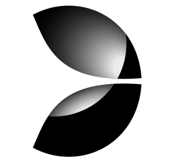 Логотип компании «Evolution»