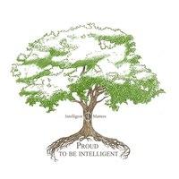 Логотип компании «Intelligent Matters»