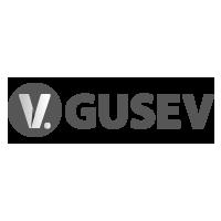 Логотип компании «vgusev.ru»