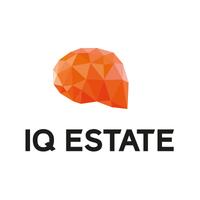 Логотип компании «IQ Estate»