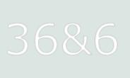 Логотип компании «36n6.ru»
