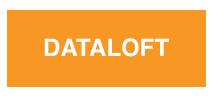 Логотип компании «Dataloft»