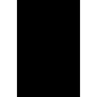 Логотип компании «Универмаг «Цветной»»