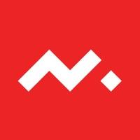 Логотип компании «Nixteam»
