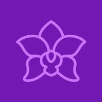 Логотип компании «Thaisoap.ru»