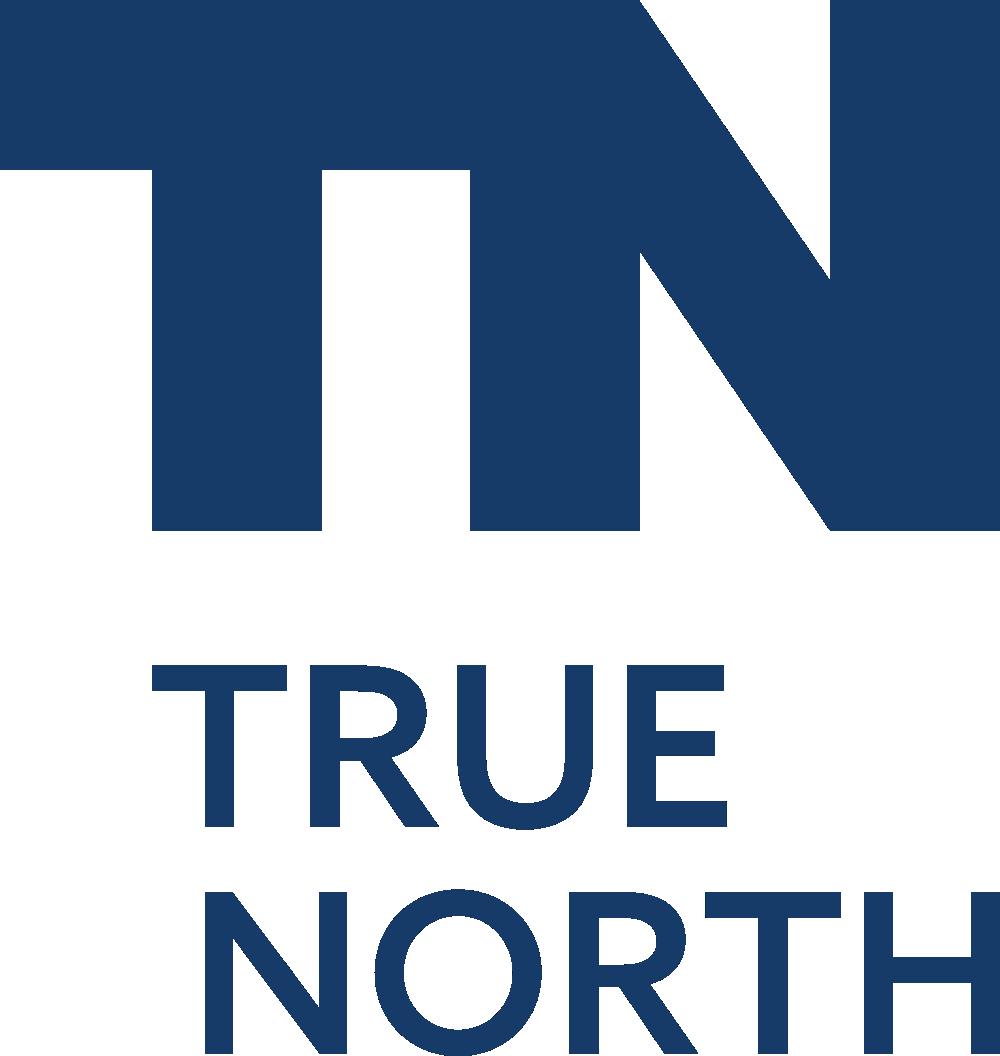 Логотип компании «TrueNorth»