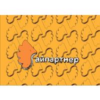 Логотип компании «Айпартнер|Бинет»