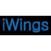 Логотип компании «InfoWings»