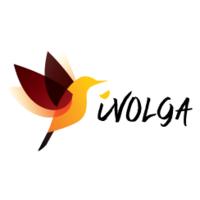 Логотип компании «iVolga Technologies»