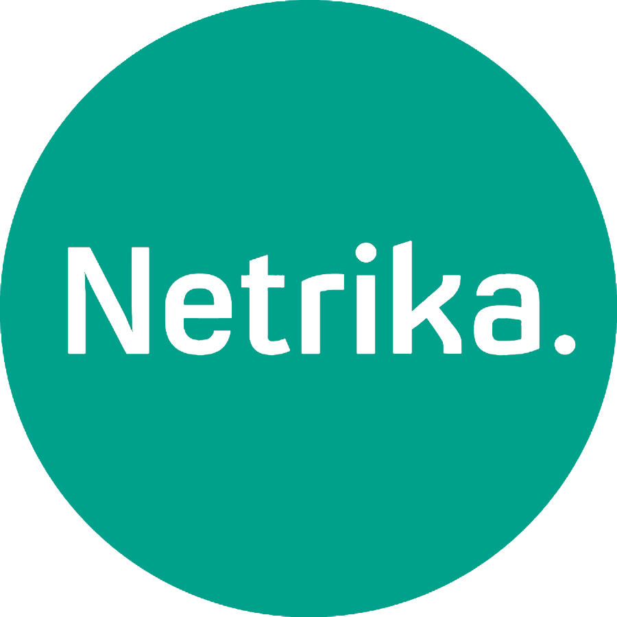 Логотип компании «Нетрика»