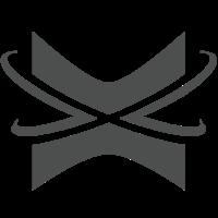 Логотип компании «Xpansa»