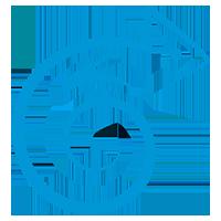 Логотип компании «БрейниСофт»