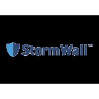 Логотип компании «StormWall»