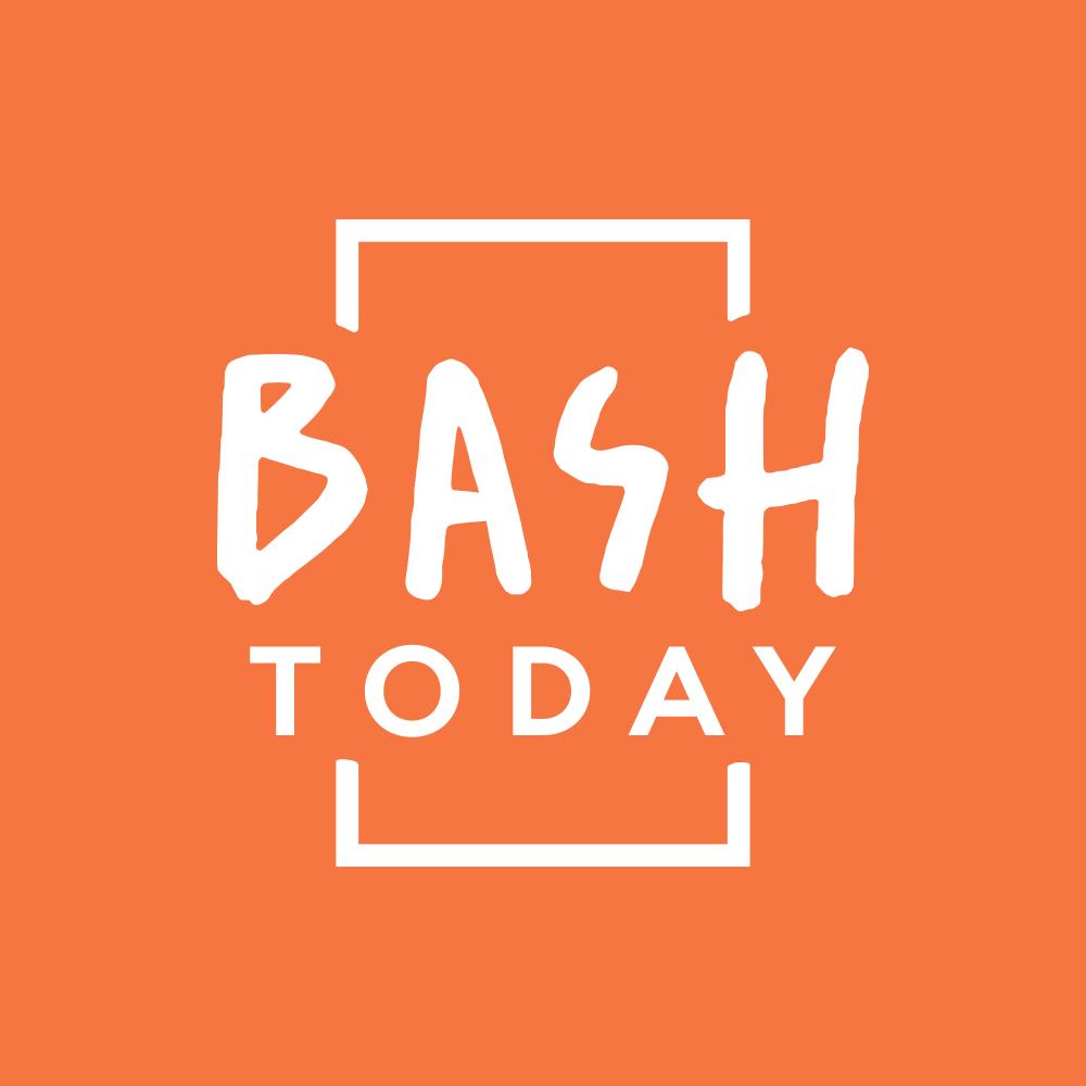 Логотип компании «Bash Today»