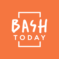 Логотип компании «Bash Today»