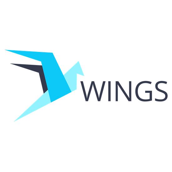 Логотип компании «Wings»