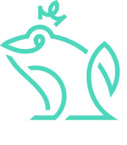 Логотип компании «Frogogo»