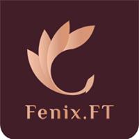 Логотип компании «Fenix.ft»