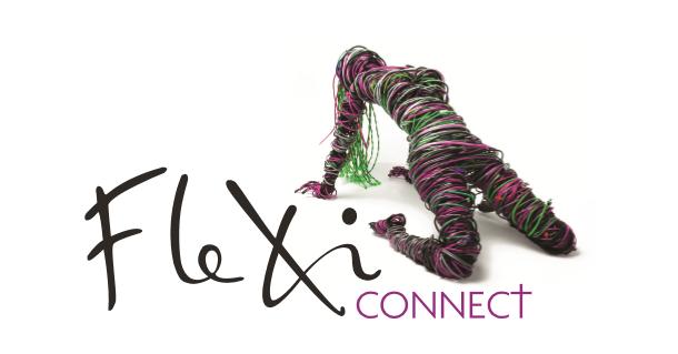Логотип компании «Maping & Flexi Connect Ltd»