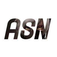 Логотип компании «AnimeSocialNetwork»
