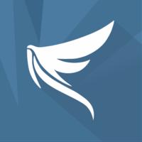 Логотип компании «Falconsender»