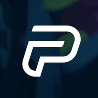 Логотип компании «Playneta»