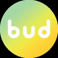 Логотип компании «BuddyHR»