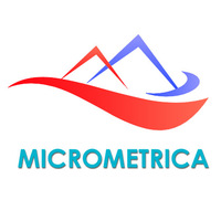 Логотип компании «Микрометрика»