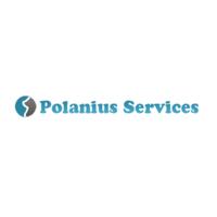 Логотип компании «Polanius Services»